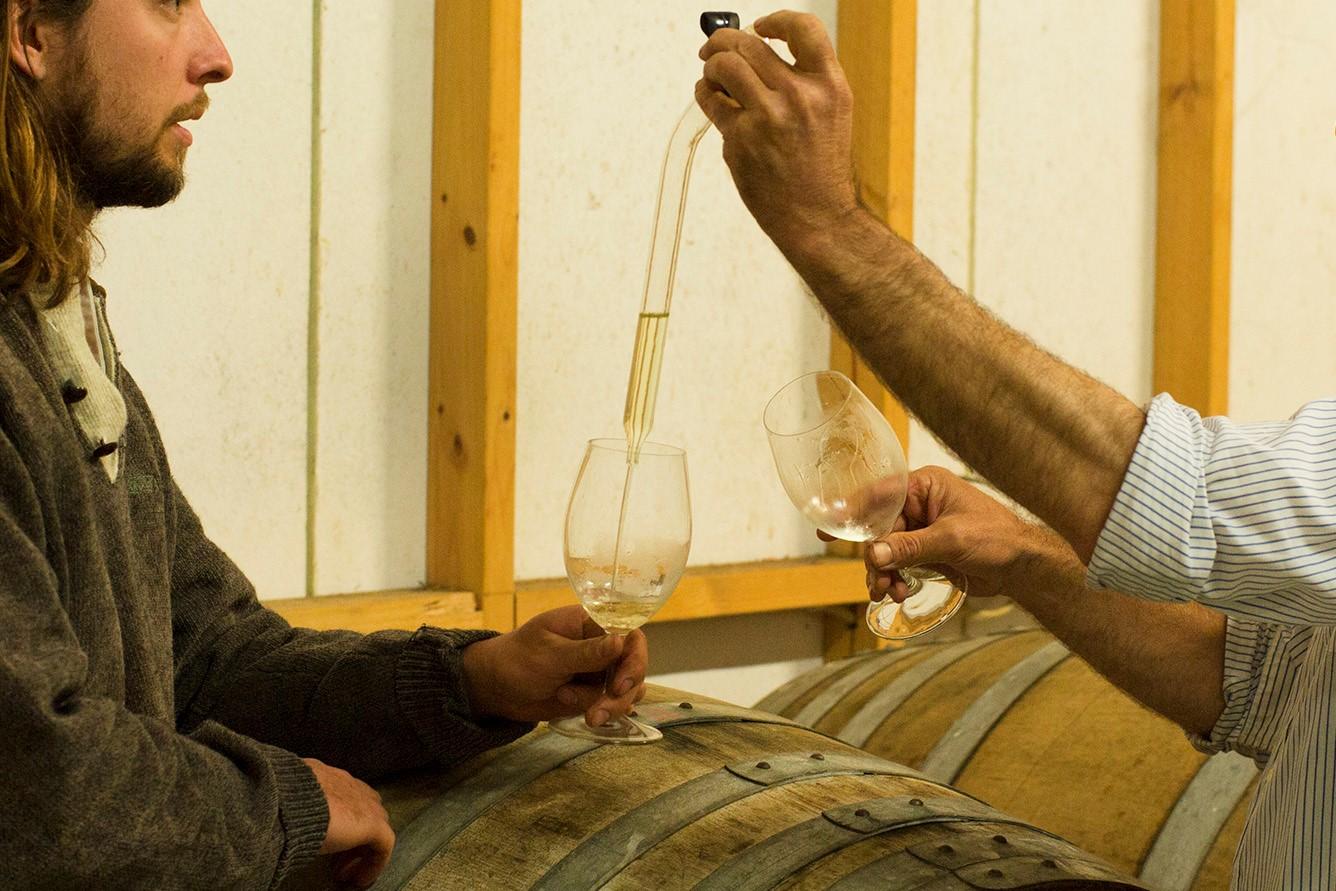 No.7 Healesville Wine Barrel Tasting Yarra Valley