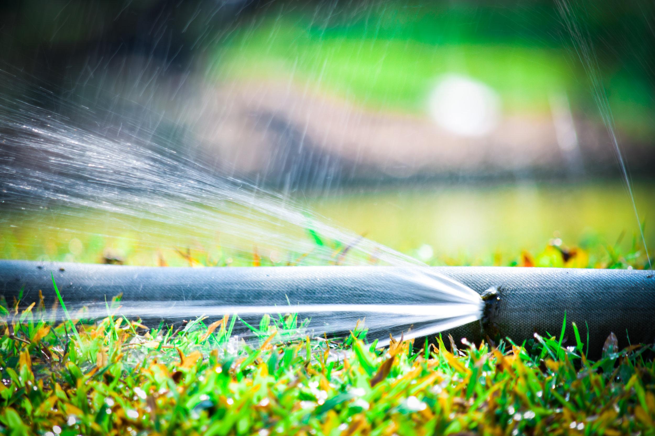 Hose Irrigation Malawi Furrow Irrigation Basin Irrigation Crop Irrigation