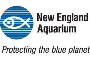 - Dive into the world of water at the New England Aquarium! Step inside and experience more than 70 exhibits featuring animals from around the world! Find adventure on a whale watch, or experience an unforgettable IMAX 3D film on New England's largest movie screen.