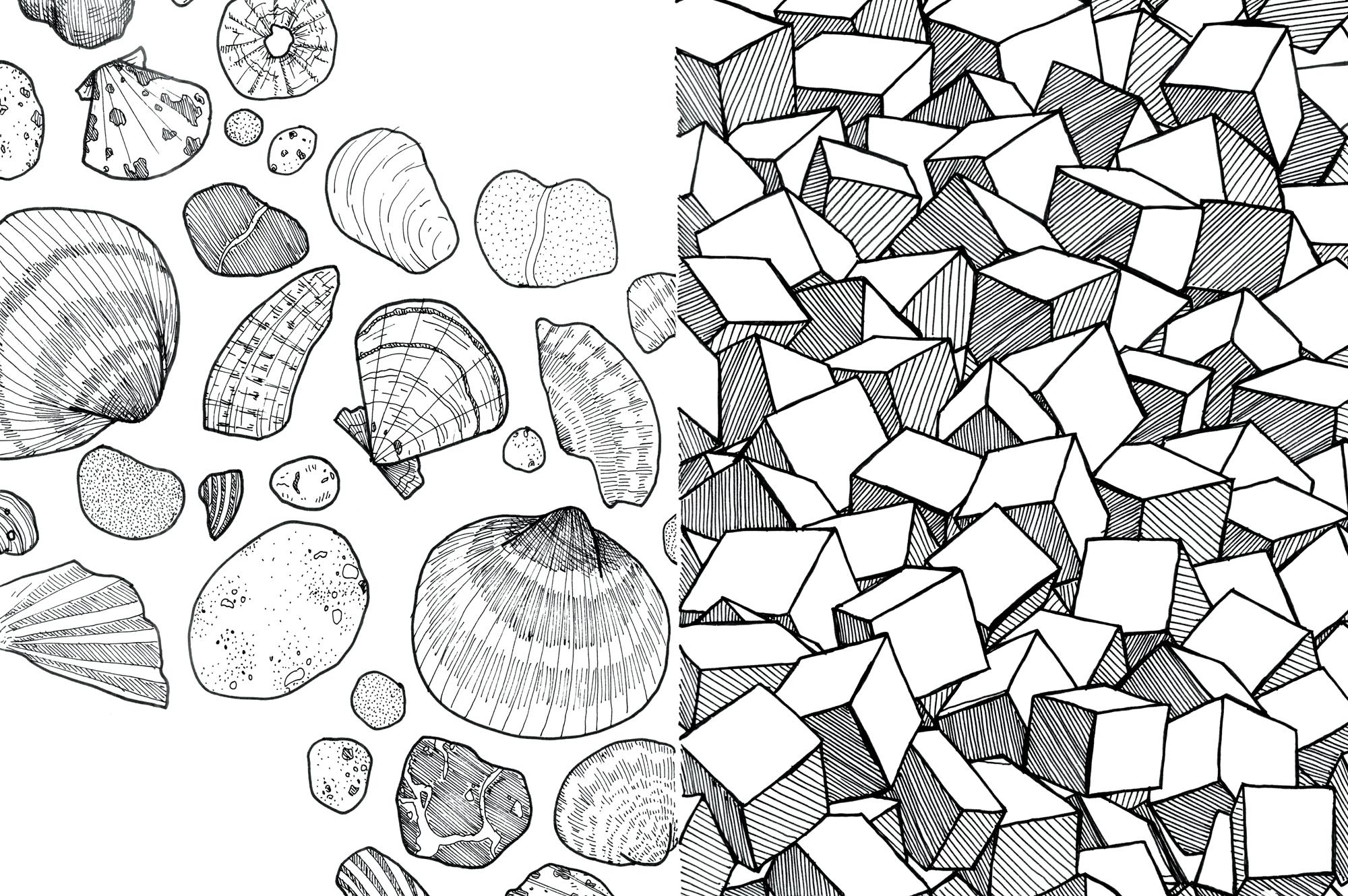 19_cadiz_shells_cubes_web.jpg