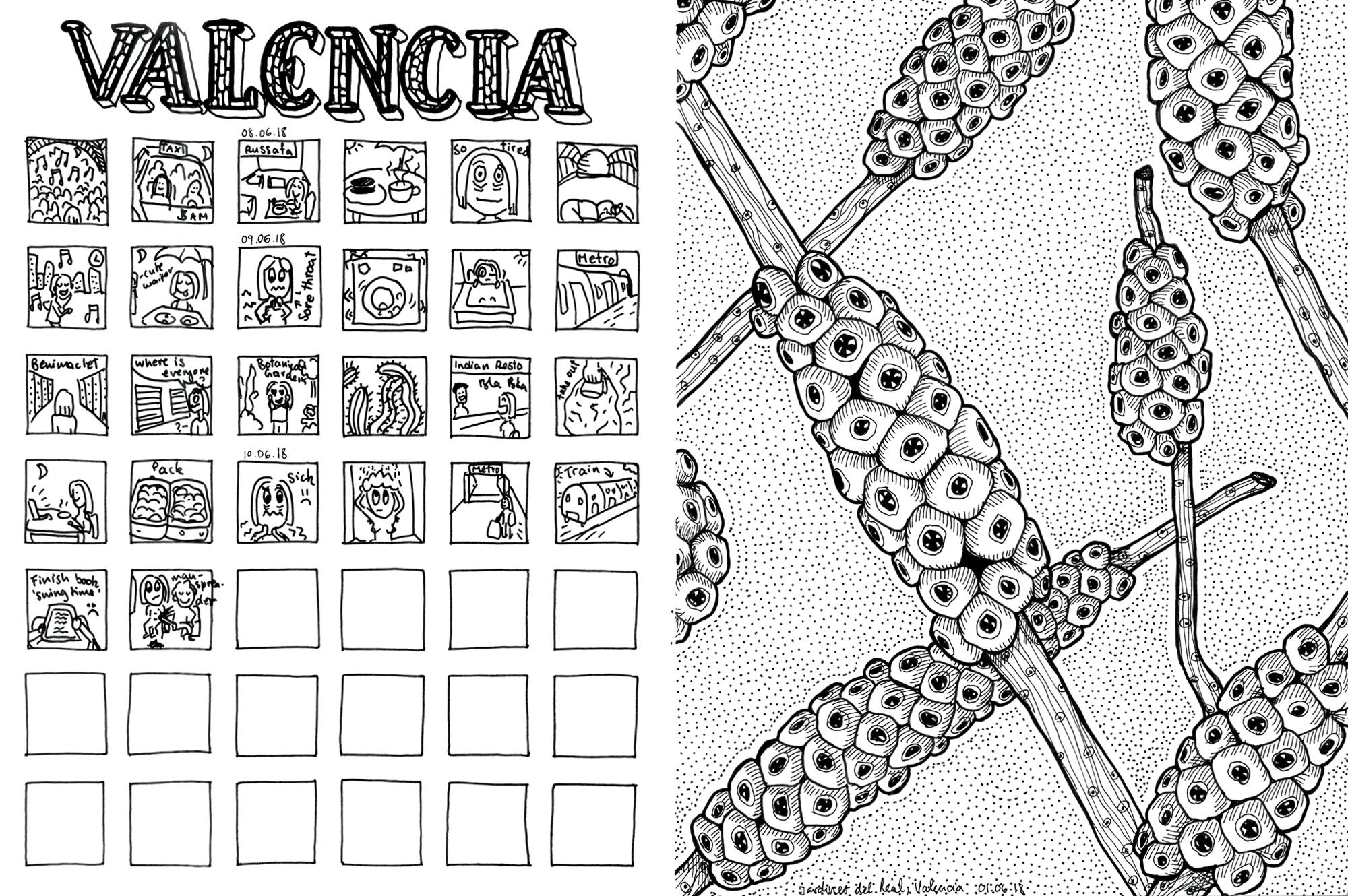32_valencia_comic_plant_web.jpg