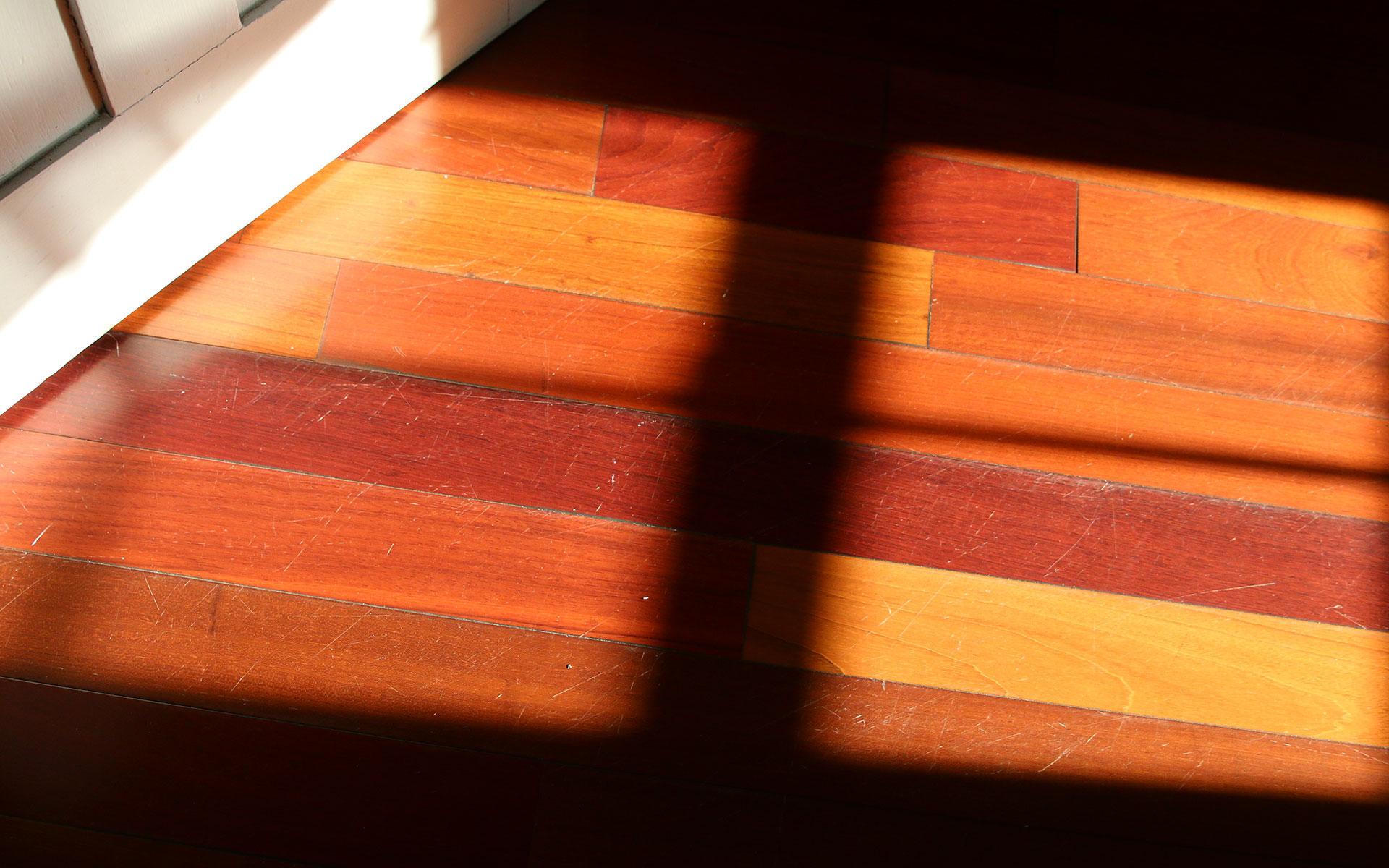 Sunlight_IMG_7534.jpg