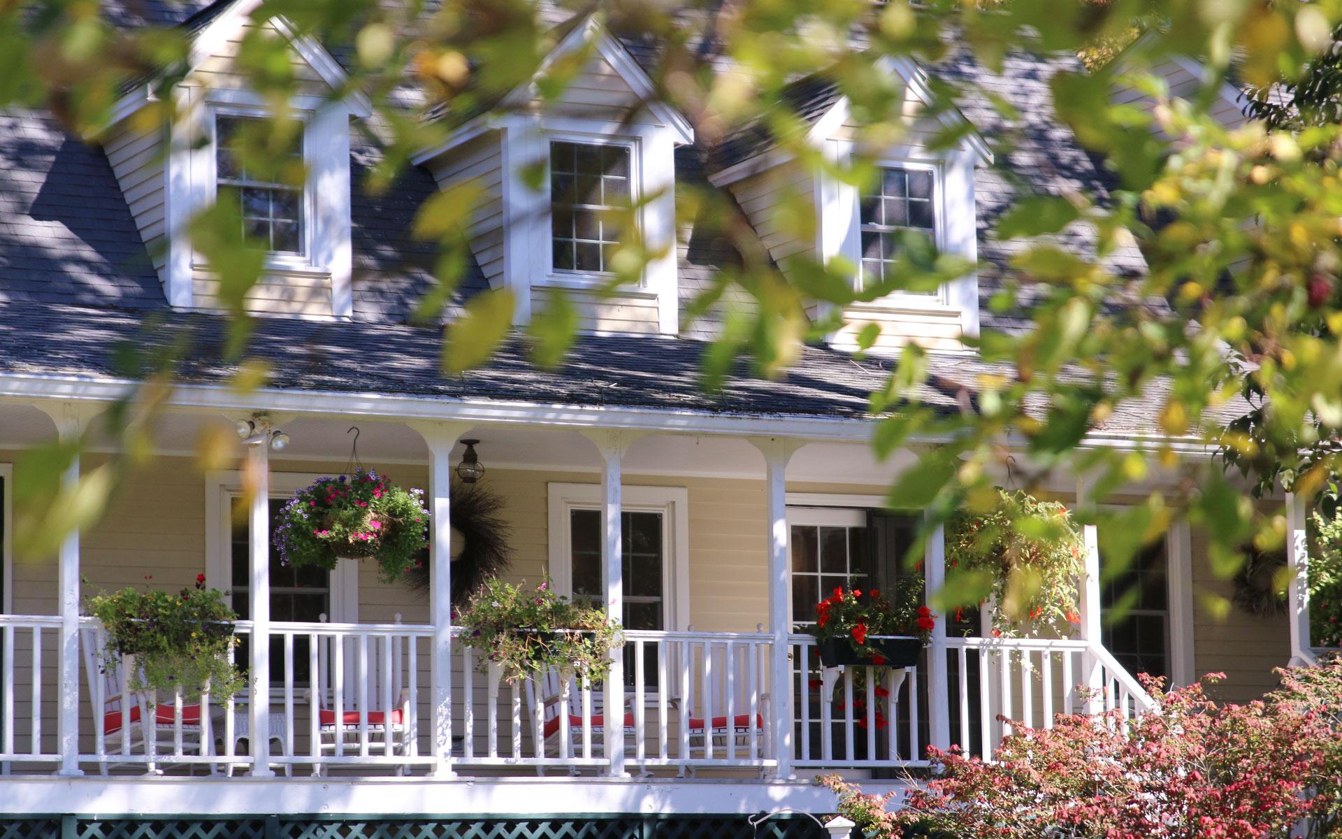 Back-porch-through-leaves_IMG_6269.jpg