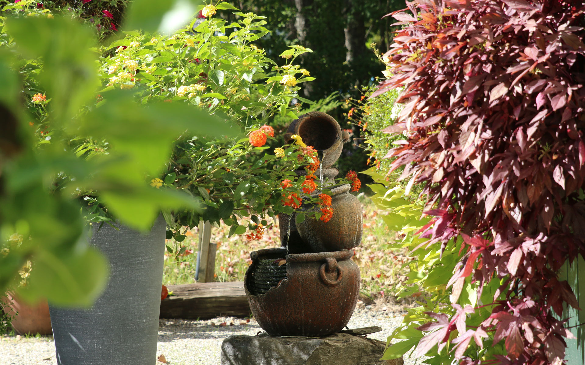 Fountain_Best_IMG_6300.jpg