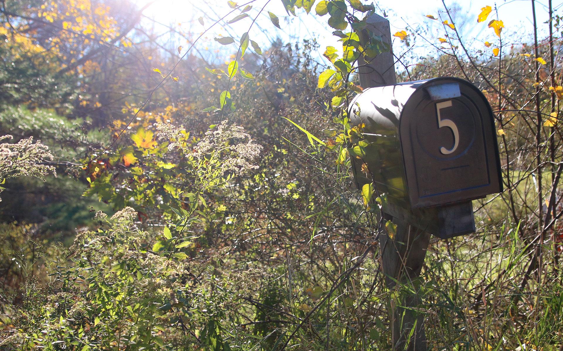 Mail-box-IMG_7652.jpg