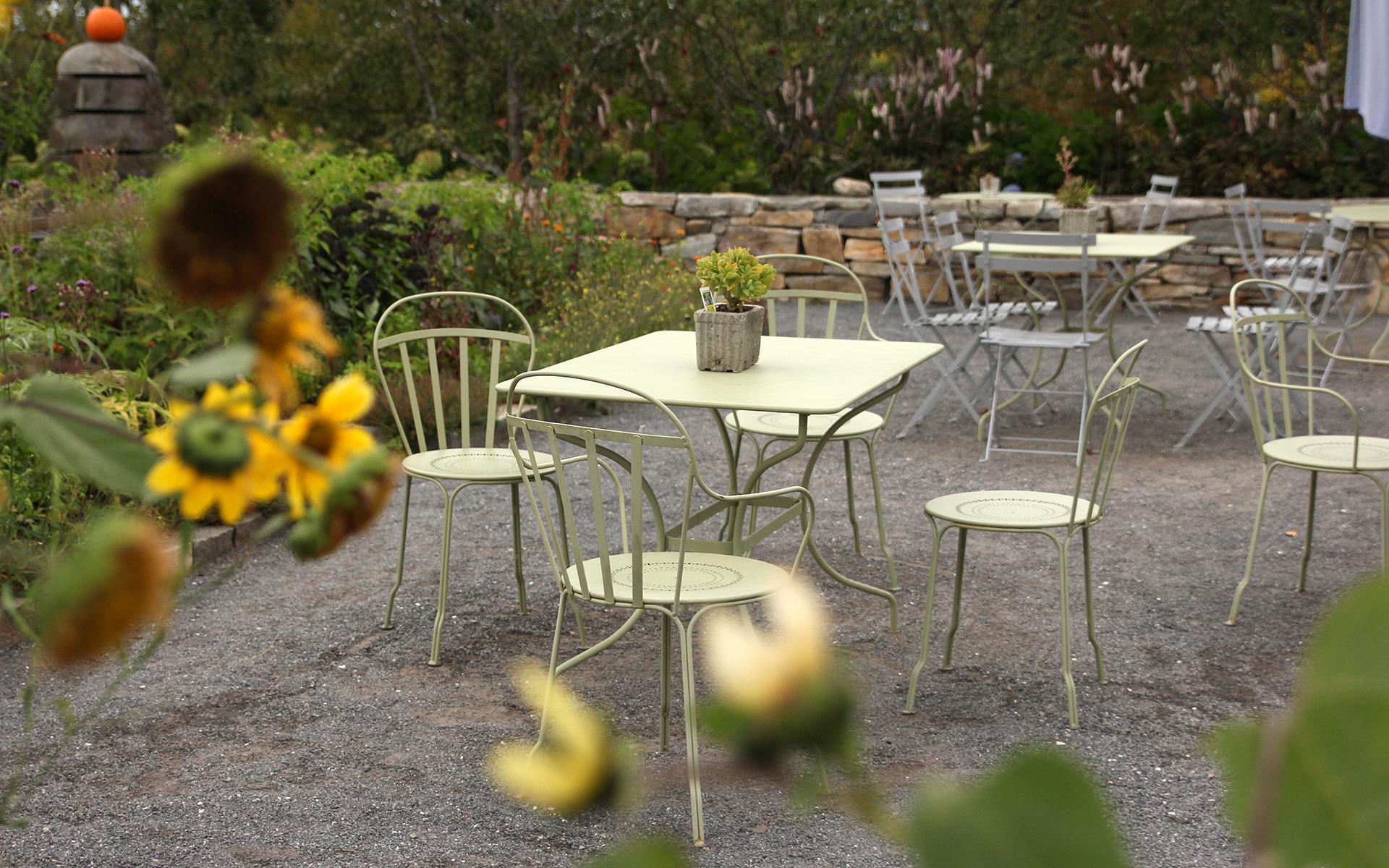 Botanical-table_IMG_7398.jpg