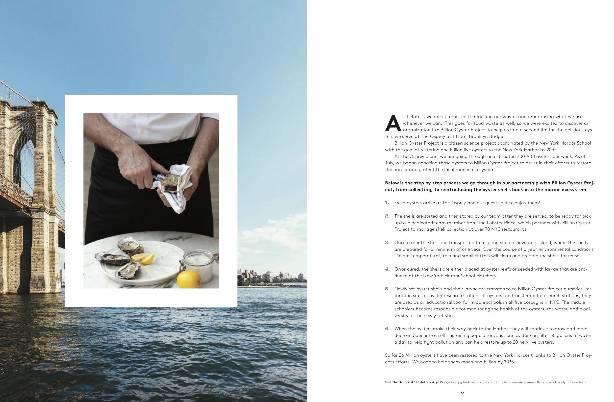 1 Hotel Magazine Preview v16 28.jpg