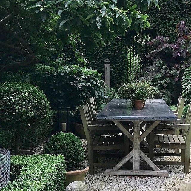Wow! Still February and I'm calling my garden clients to see if they need me! Start planning those outdoor spaces now. . . . . #gardening #gardeninspo #outdoordesign #outdoorliving #englishgarden #gardendesign #getoutside #gardendesigner