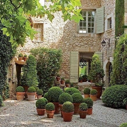 My kind of courtyard. Topiary spheres have in simple terracotta pots of different size. Courtyard gardens... the perfect spot for a G&T! Mine's a Hendrick's🍸@hendricksgin . . . . #courtyard #courtyardgarden #gardendesign #gardendesigner #ihavethisthingwithgardens #lovelifesdesign #outdoordesign #outdoordecor