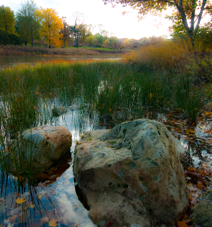 Morton Arboretum, Lisle, Illinois - by John Cornelissen