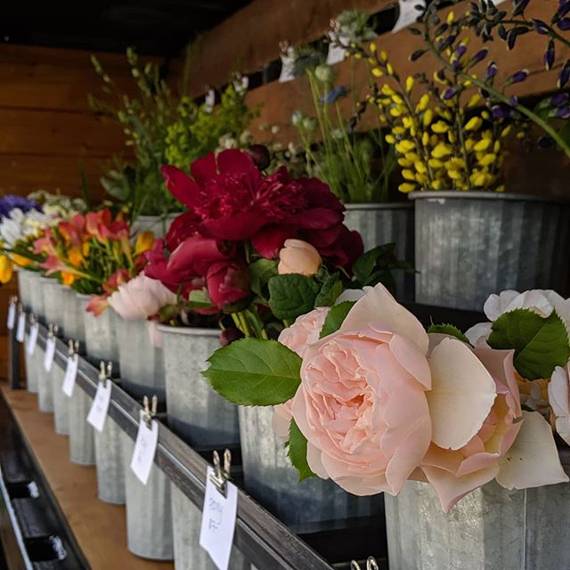 The sun will be out and we'll have fresh flowers tomorrow on the #SprigRig @nybgmarket @nybg from 9am - 3pm! Come on by!