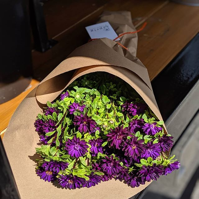 Fresh, robust mini asters on the truck this week courtesy of the rock stars at @eddyfarmct  Come get them - one stem could be divided to fill 5 bud vases!  FIND THE #SprigRig THURSDAY 8/15  @scarsdalefarmersmarket FRIDAY 8/16 @downtoearthmkts in New Rochelle - Thomas Paine Cottage SATURDAY 8/17 @newrochellefarmersmarket on Library Green  SUNDAY 8/18 @irvingtonfarmersmarket ••• #flowertruck #westchester #westchesterny #WestchesterCounty #rivertowns #irvington #newrochelle #hastings #dobbsferry #larchmont #scarsdale #bronxville #yonkers #farmtotable #farmfresh #fieldtovase #slowflowers #locallygrown#shoplocal #shopsmall #womanowned #treatyourself