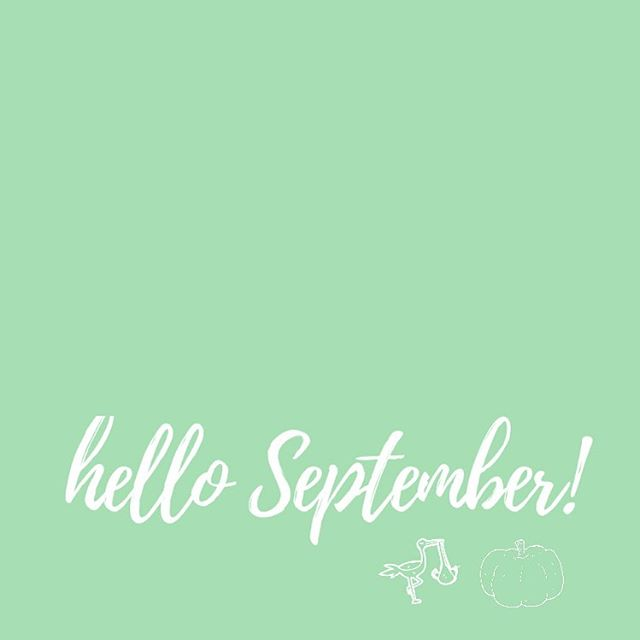 September is here and we're back in full swing!! 🤗 we enjoyed a little time this August to recharge, enjoy the end of summer, and celebrate with friends, but we're excited for a busy and full month ahead these next few weeks! Swipe to see the above schedule and be sure to check us out at these events! As always, weekly orders are due at midnight on Wednesday +++ keep your eyes and ears peeled for a new energy bite flavor that might be rolling in soon…! 🍪🍪🍪