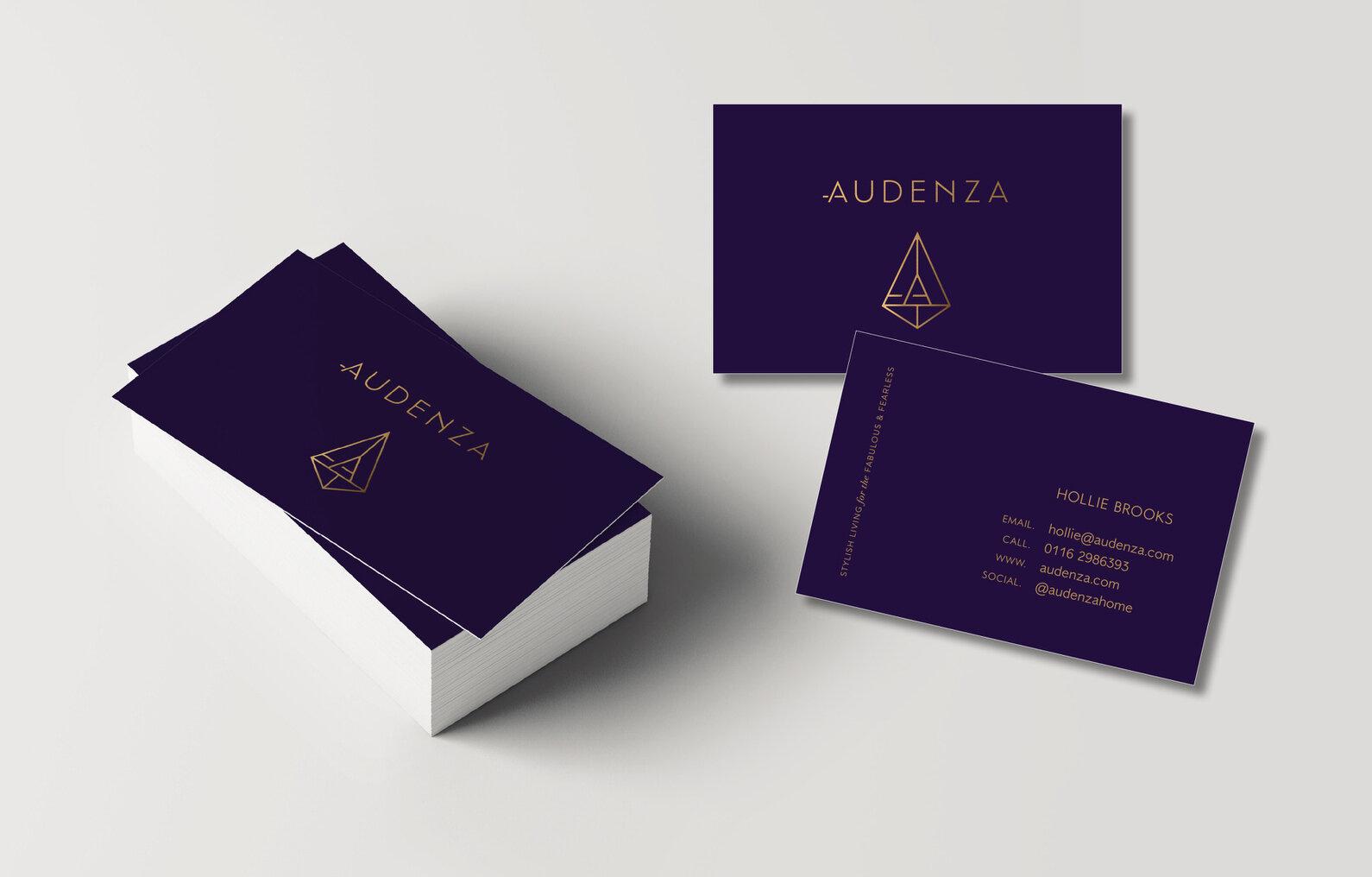 Audenza_6-1.jpg