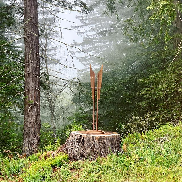 We have sculpture in our forest🌲🌲🌲🌲🌲🌲🌲🌲🌲🌲🏹 #artonsite #sculpture #redwoodforest #redwoods #ranchlife #metalsculpture #steelsculpture #artlovers