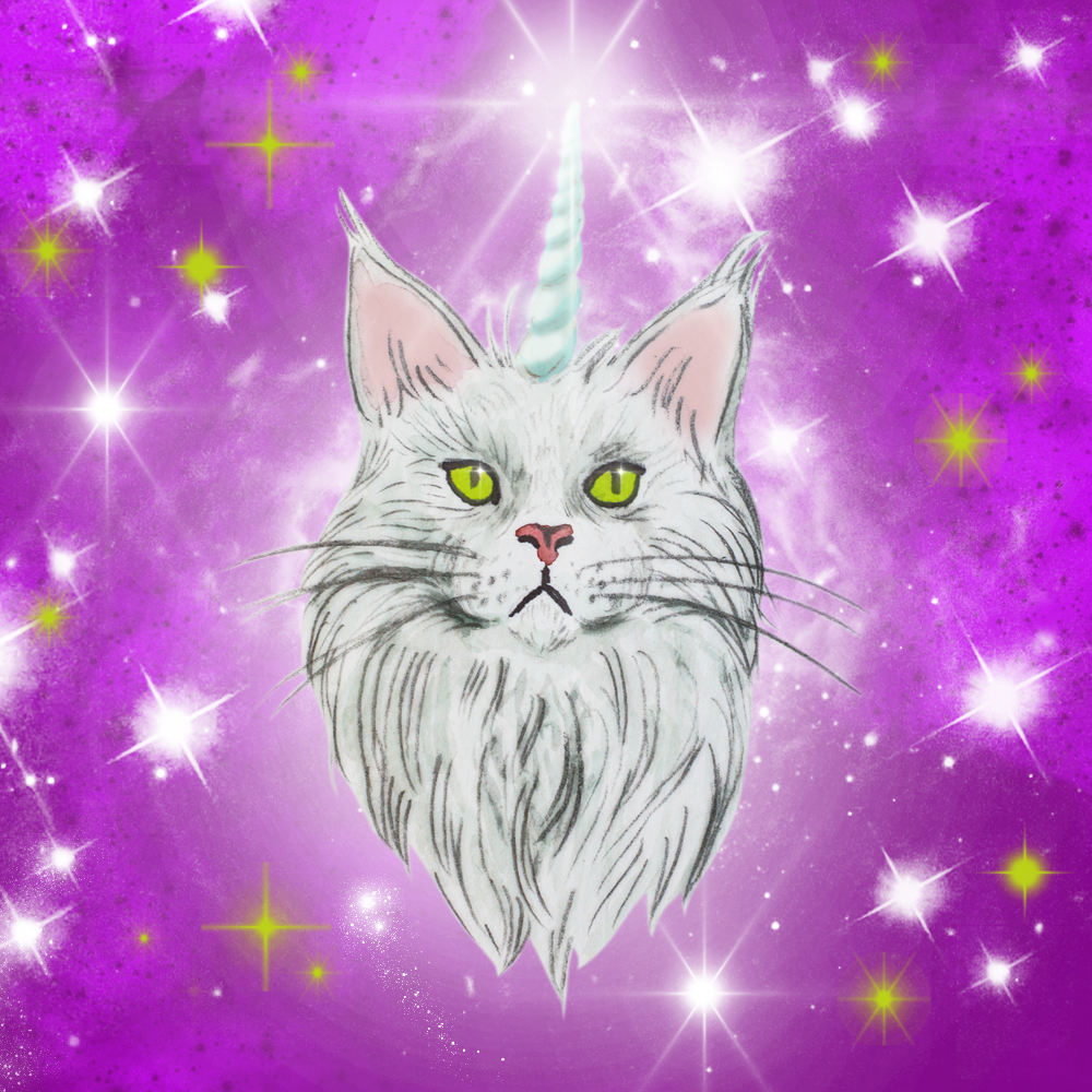cat_unicorn.jpg