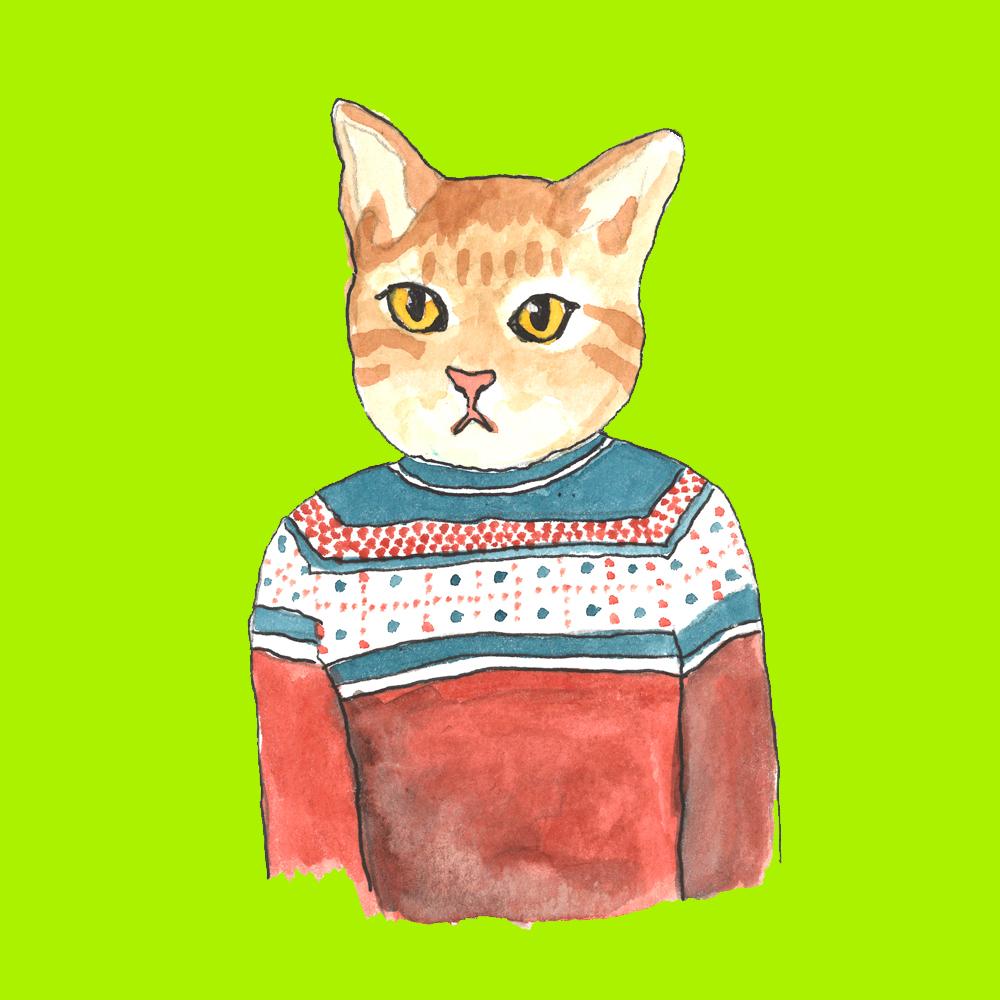 catsweater.jpg