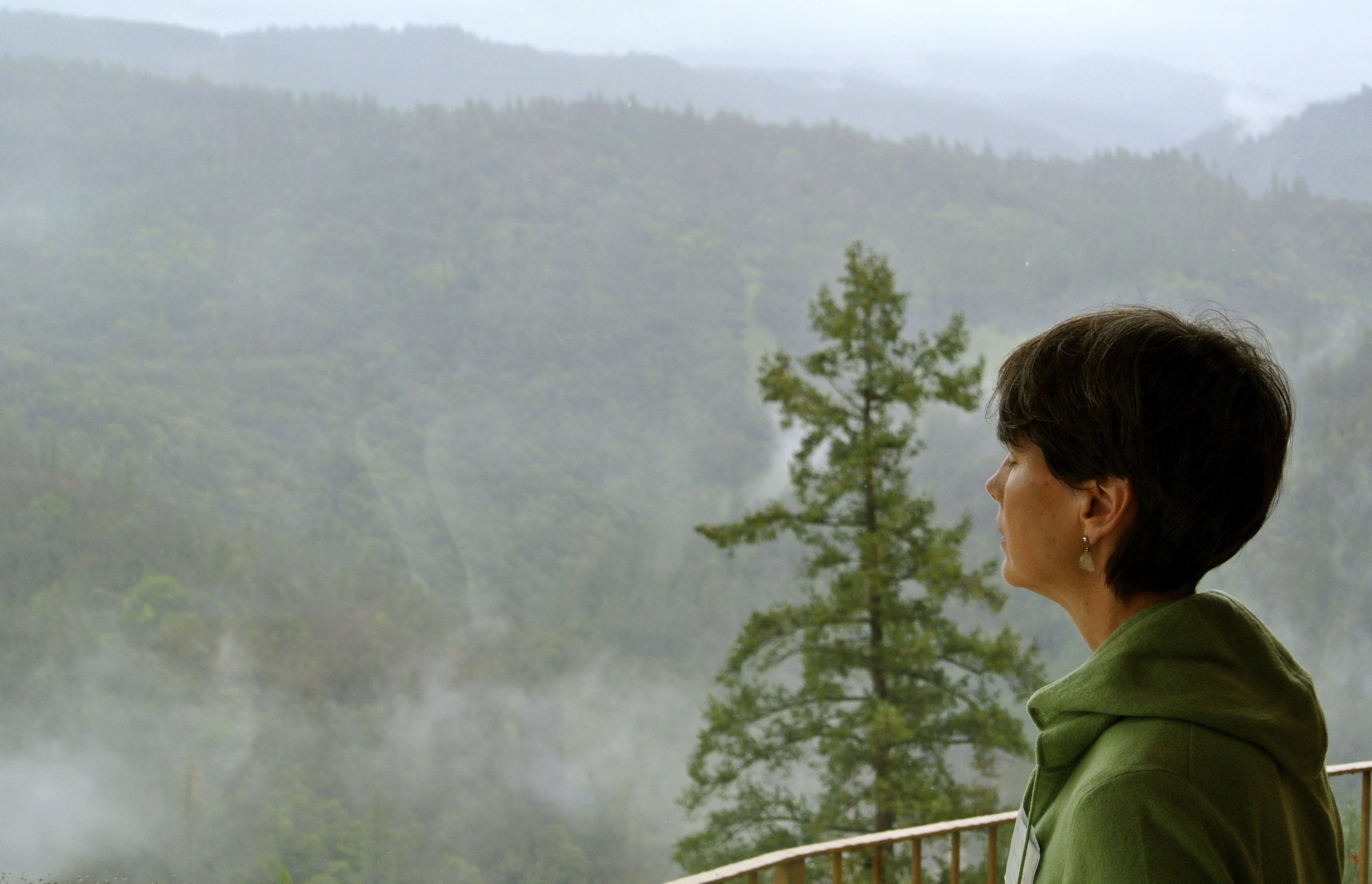meditation at Ananda.jpg