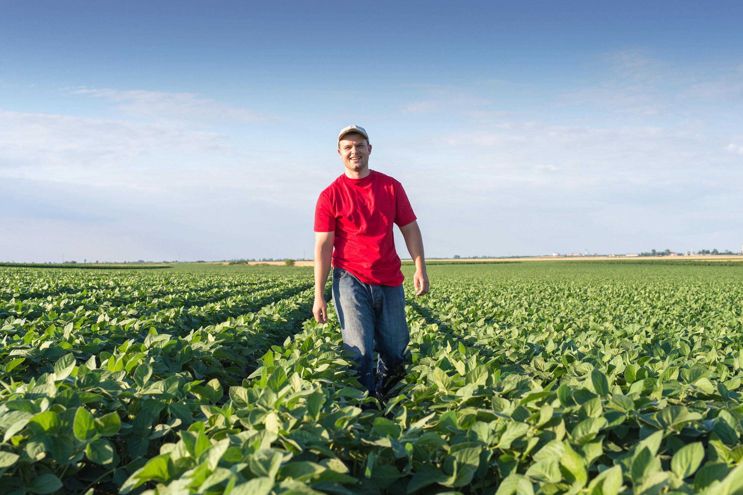 farmer-in-soybean-fields-480619342_4200x2795 (1).jpeg