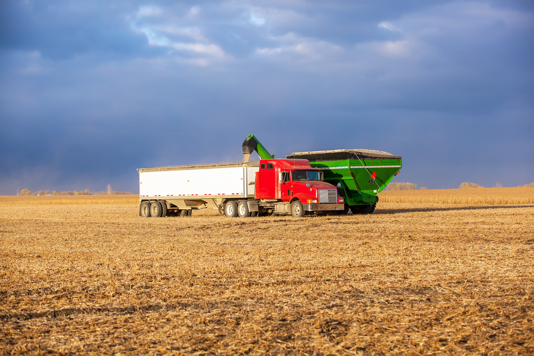 Grain-Cart-Filling-Semi-Truck-With-Soybeans-521289473_2122x1415 (1).jpeg