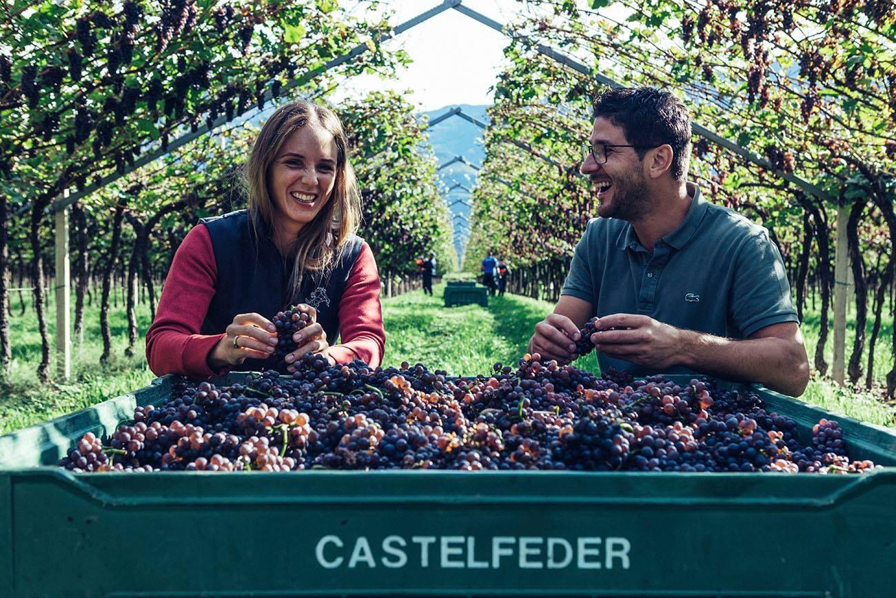 Weingut Castelfeder - Alto Adige //  Wine Map of Italy>