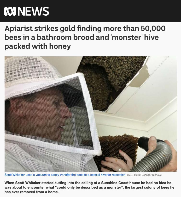 ABC News, 26 November 2018  By  Jennifer Nichols