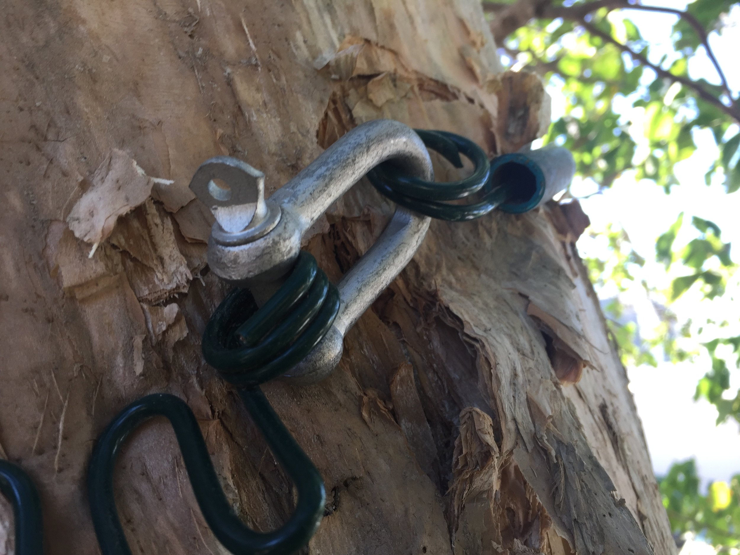 A D-shackle makes for easier removal and return of the nesting box.