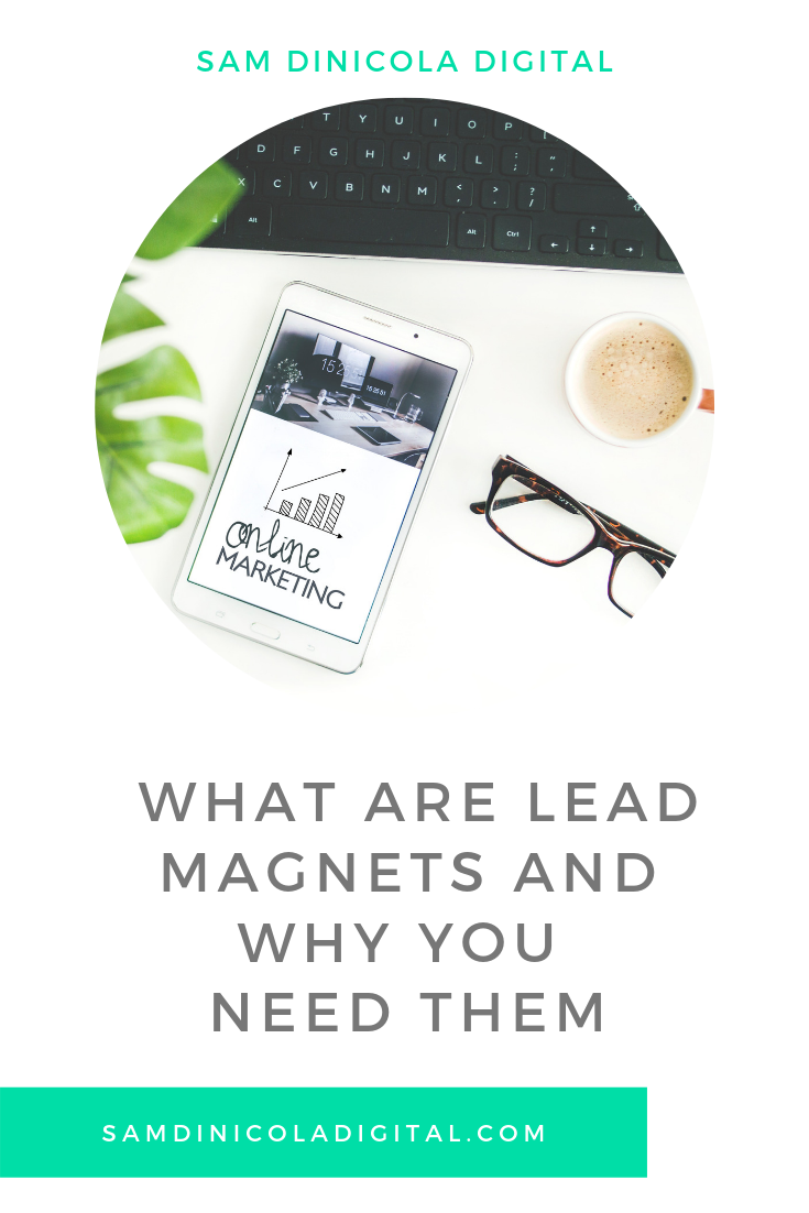 _ What Are Lead Magnets and Why You Need Them 5.png