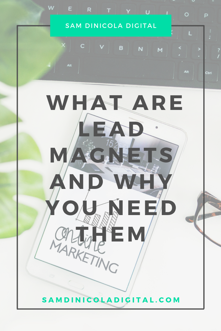 _ What Are Lead Magnets and Why You Need Them 7.png