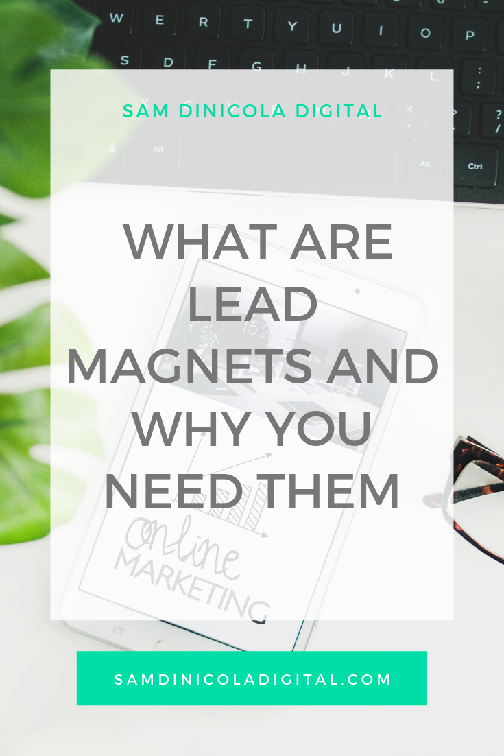 _ What Are Lead Magnets and Why You Need Them _8.png