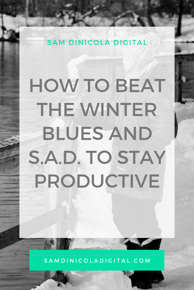 How to Beat the Winter Blues and S.A.D to Stay Productive _8.png