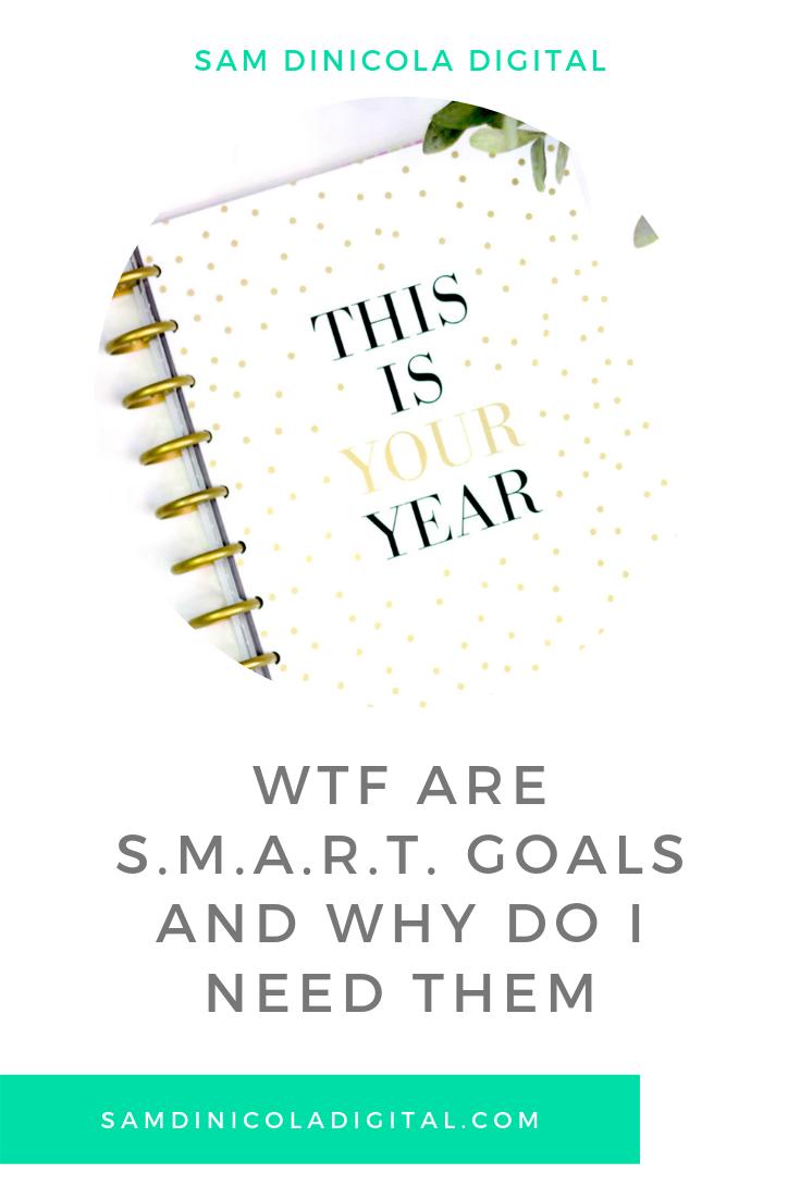 WTF are S.M.A.R.T. Goals and Why Do I Need Them 5.png
