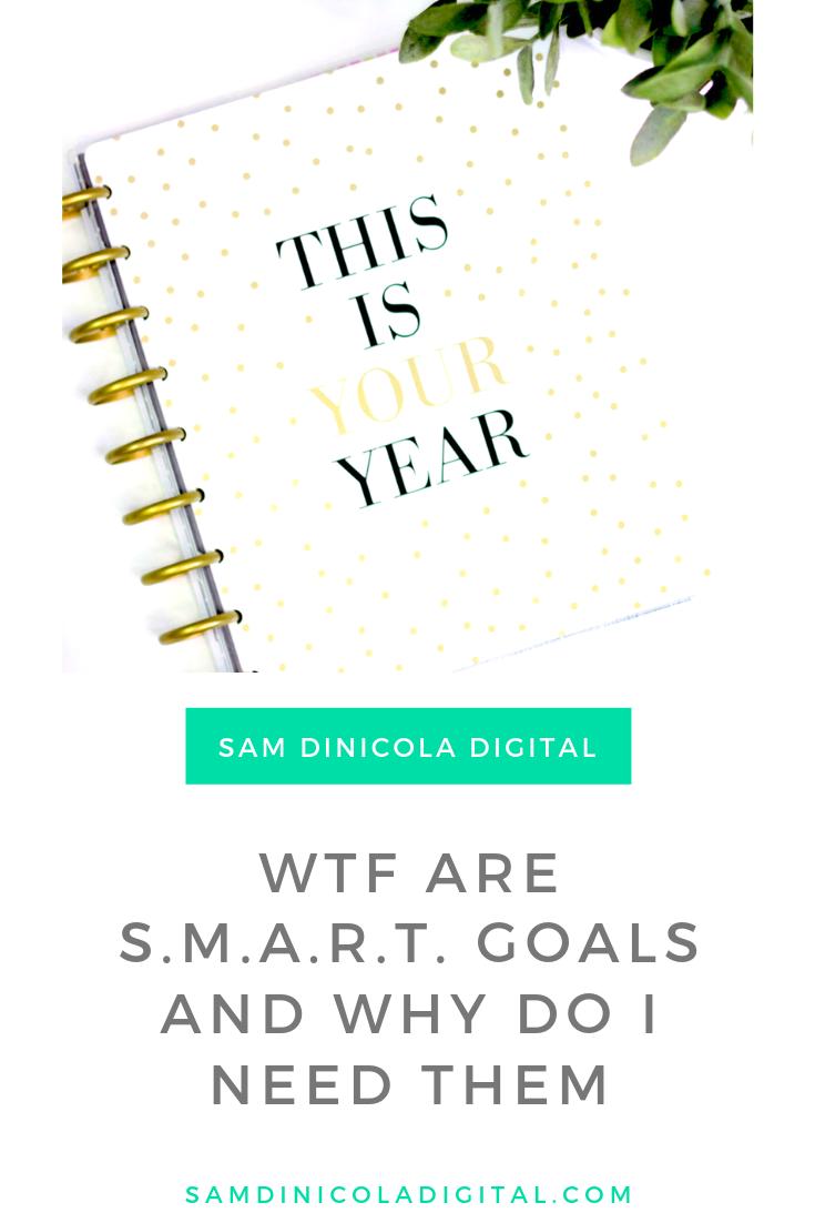 WTF are S.M.A.R.T. Goals and Why Do I Need Them 6.png