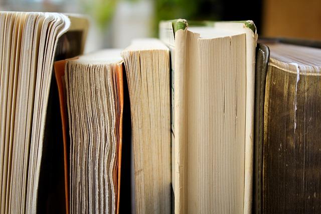 Novels - The words that I let flow…