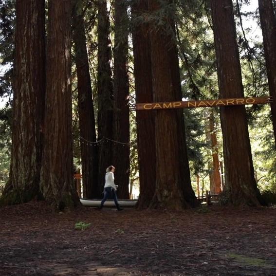 PHOTO_Walking-in-the-Redwoods.jpg