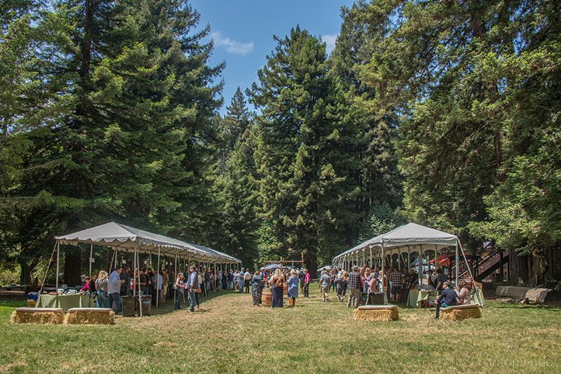 Grand Tasting in the redwoods - 12 - 4pm | Camp NavarroTicket required. Sip, sample and savor Pinot Noir, Pinot Noir rosé, and sparkling wines, paired with delicious bites.Grand Tasting →