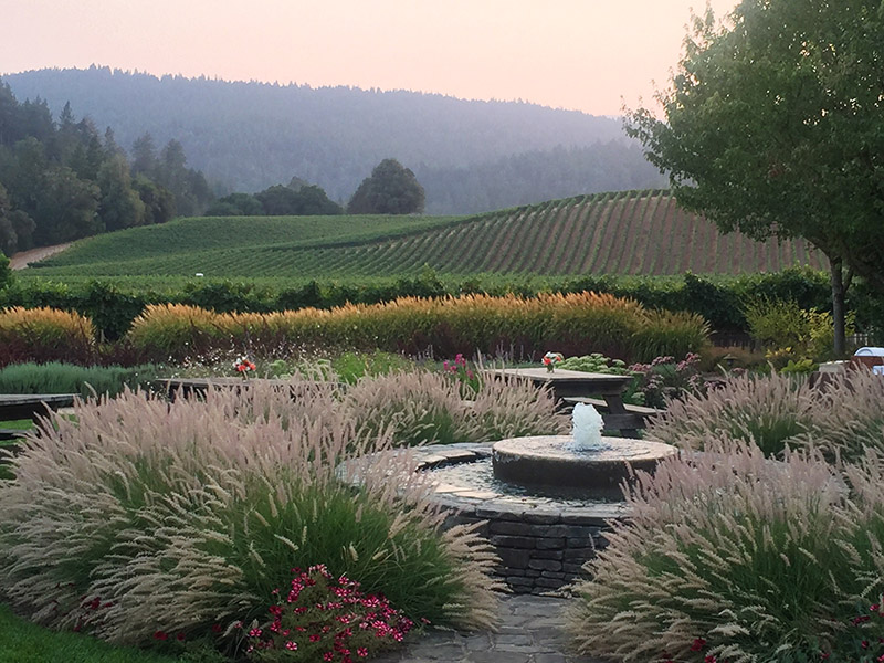 Casual BBQ & Sunset in the Vineyard - 5 - 8pm   Goldeneye WineryTicket required. Join us amidst the beautiful vineyards at Goldeneye Winery for a BBQ and live music. Bring a bottle to share!Casual BBQ →