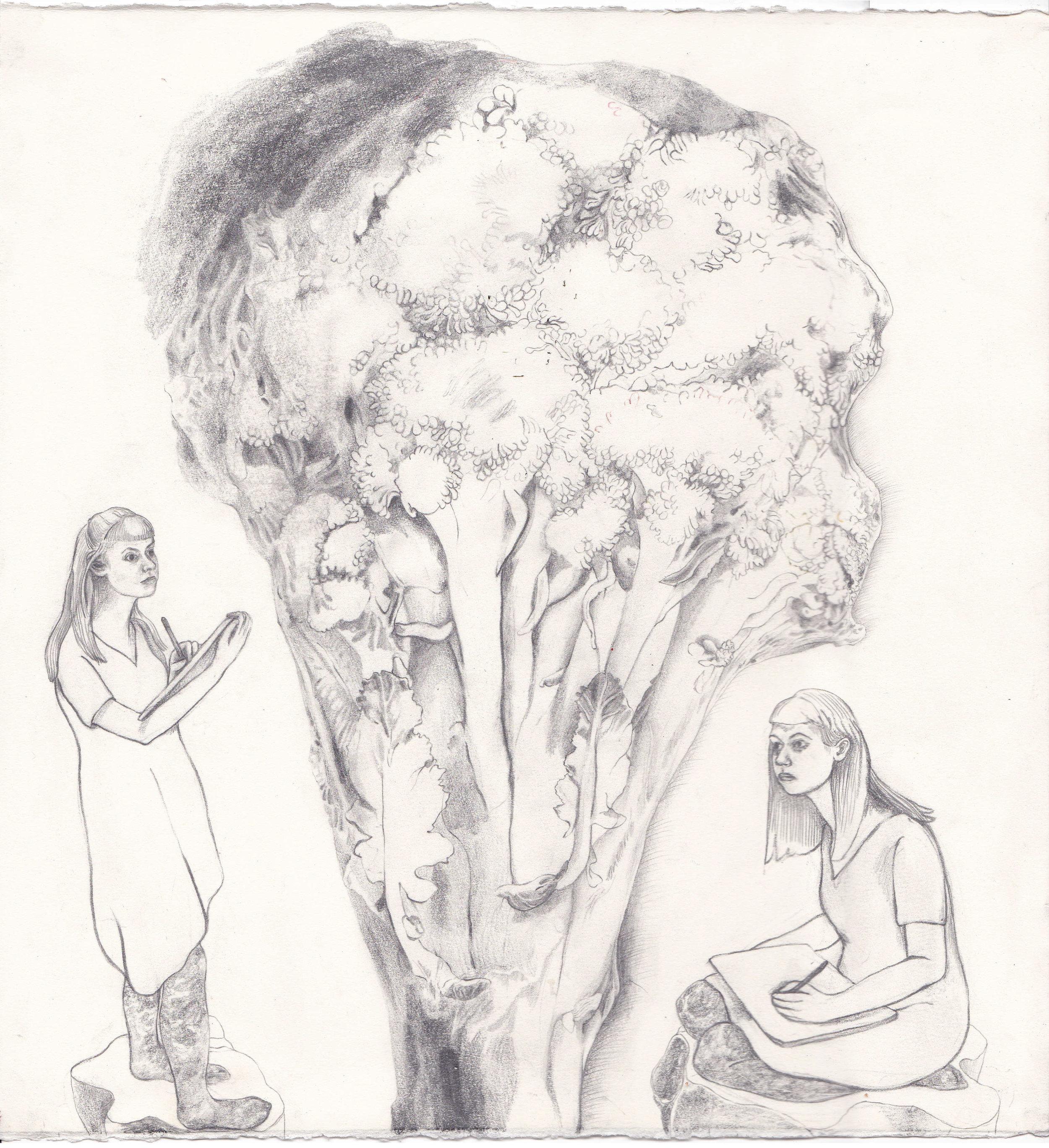 I Draw the Tree
