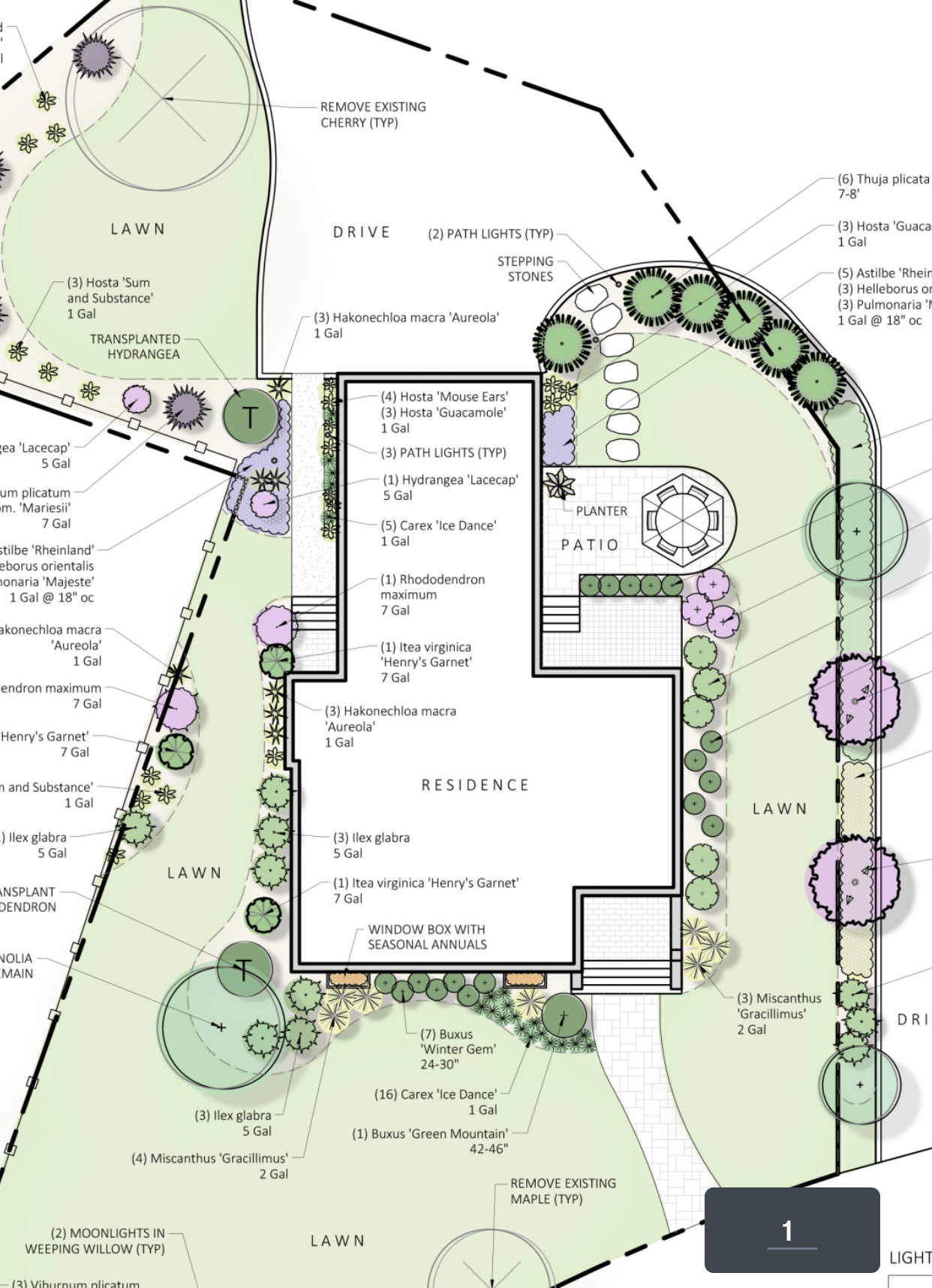 TILLY PLANTING PLAN FOR THE PROPERTY