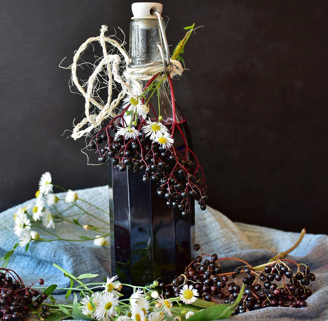 elderberries 6.jpg