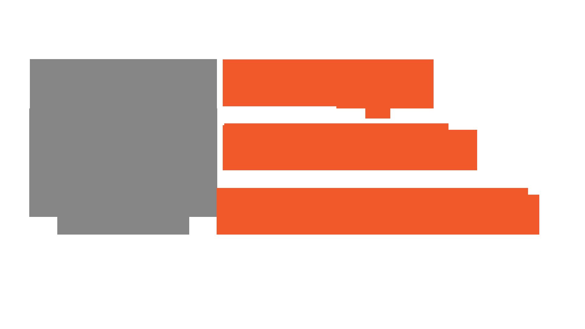 BSM_Logo_nobg.png