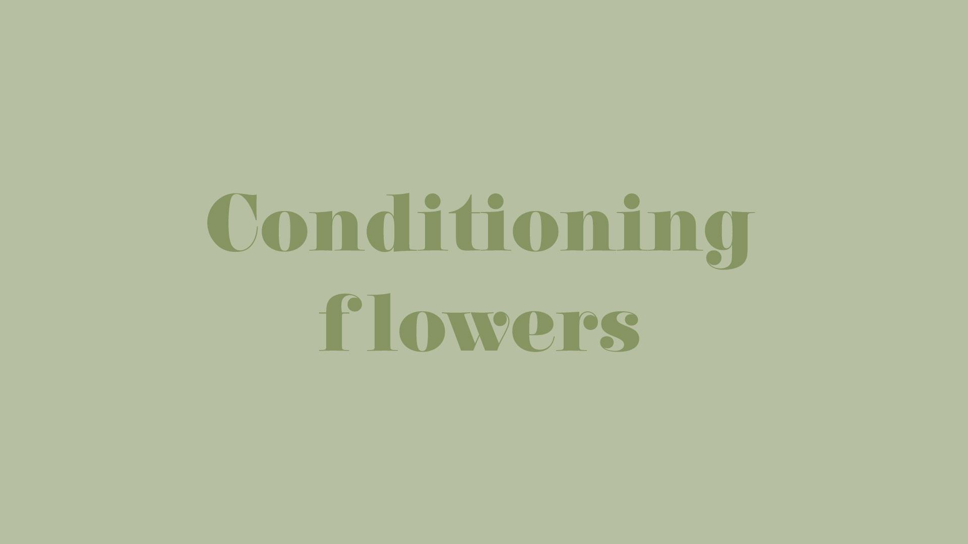 Title-ConditioningFlowers.jpg