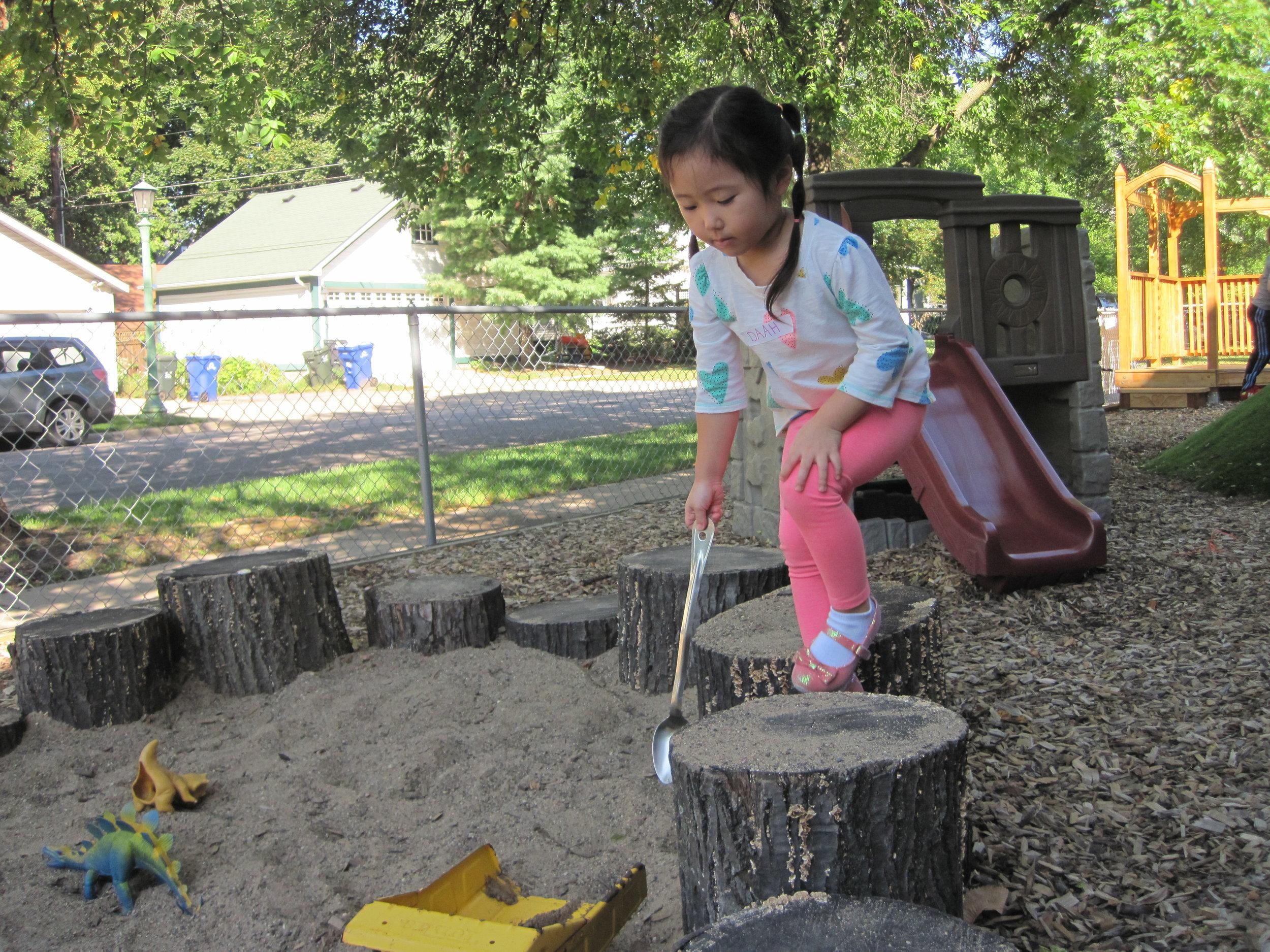 Outdoor-stumps.JPG
