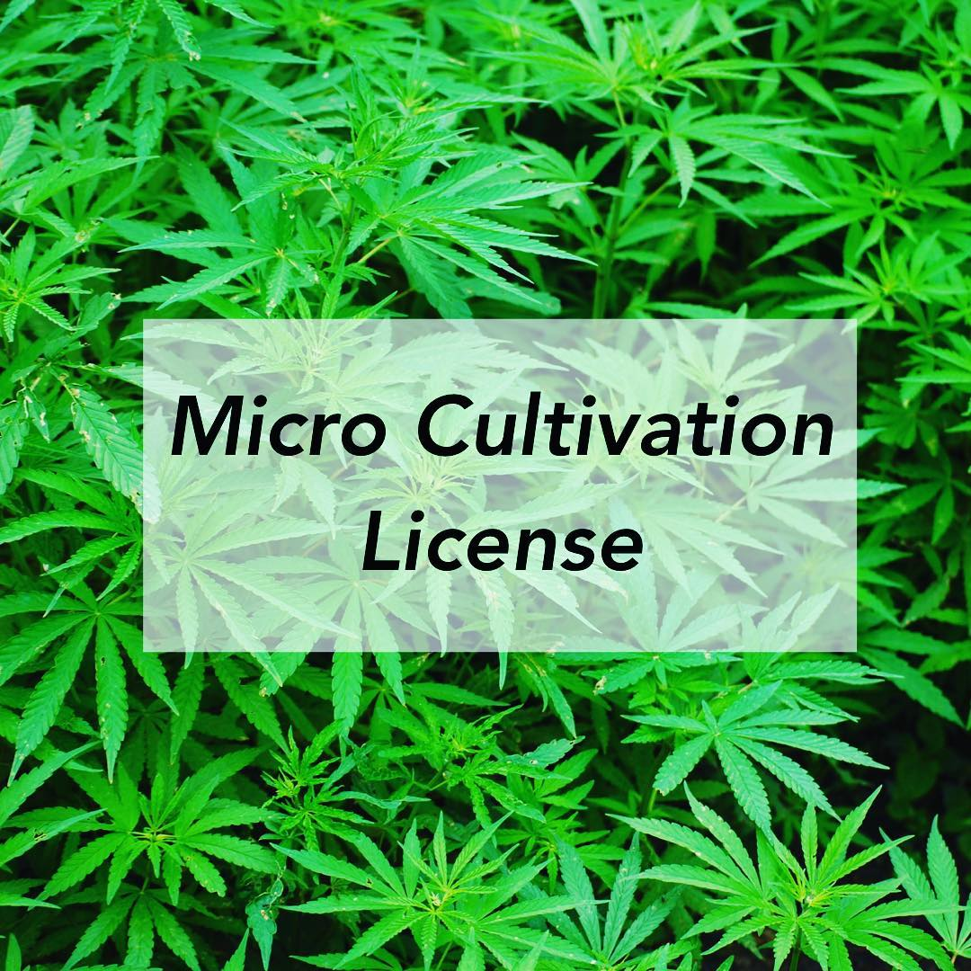 micro cultivation license