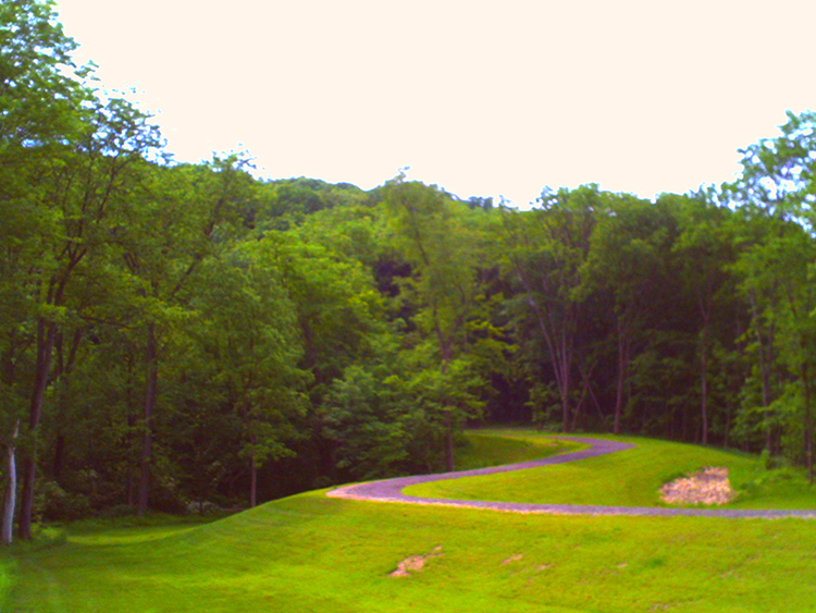 Bellevue State Park's lush green woods