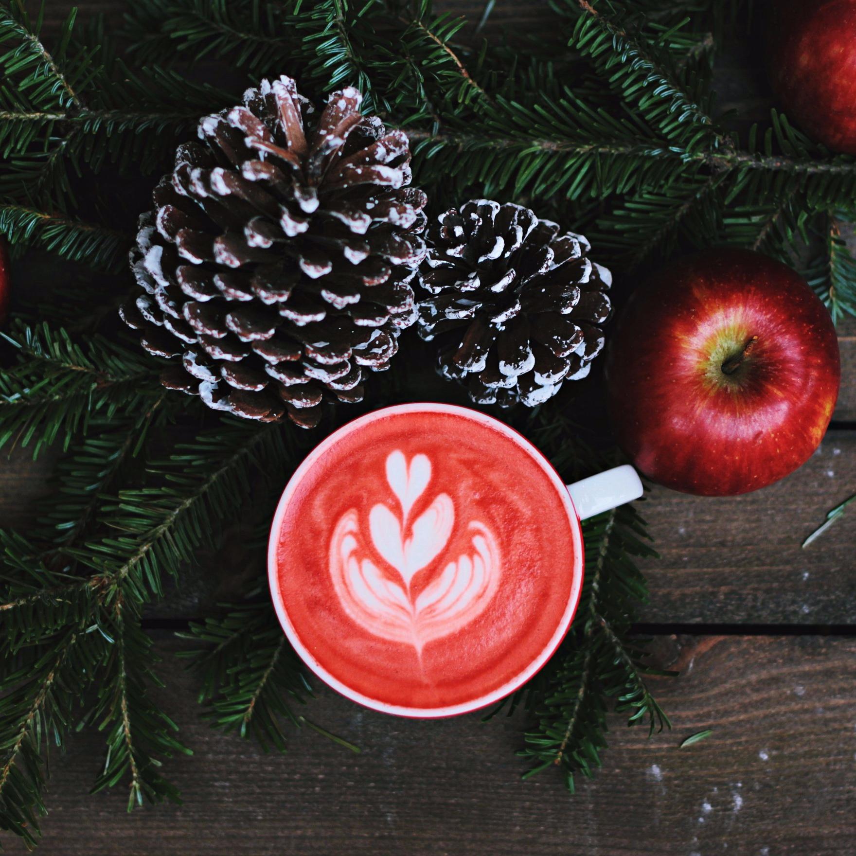 Sunday December 1st  - WONDERLAND