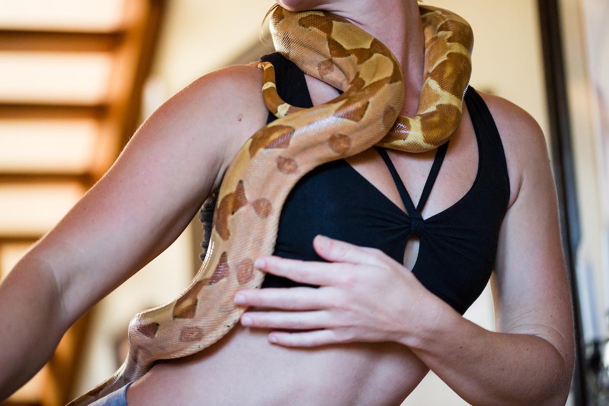 Serpent Healing -