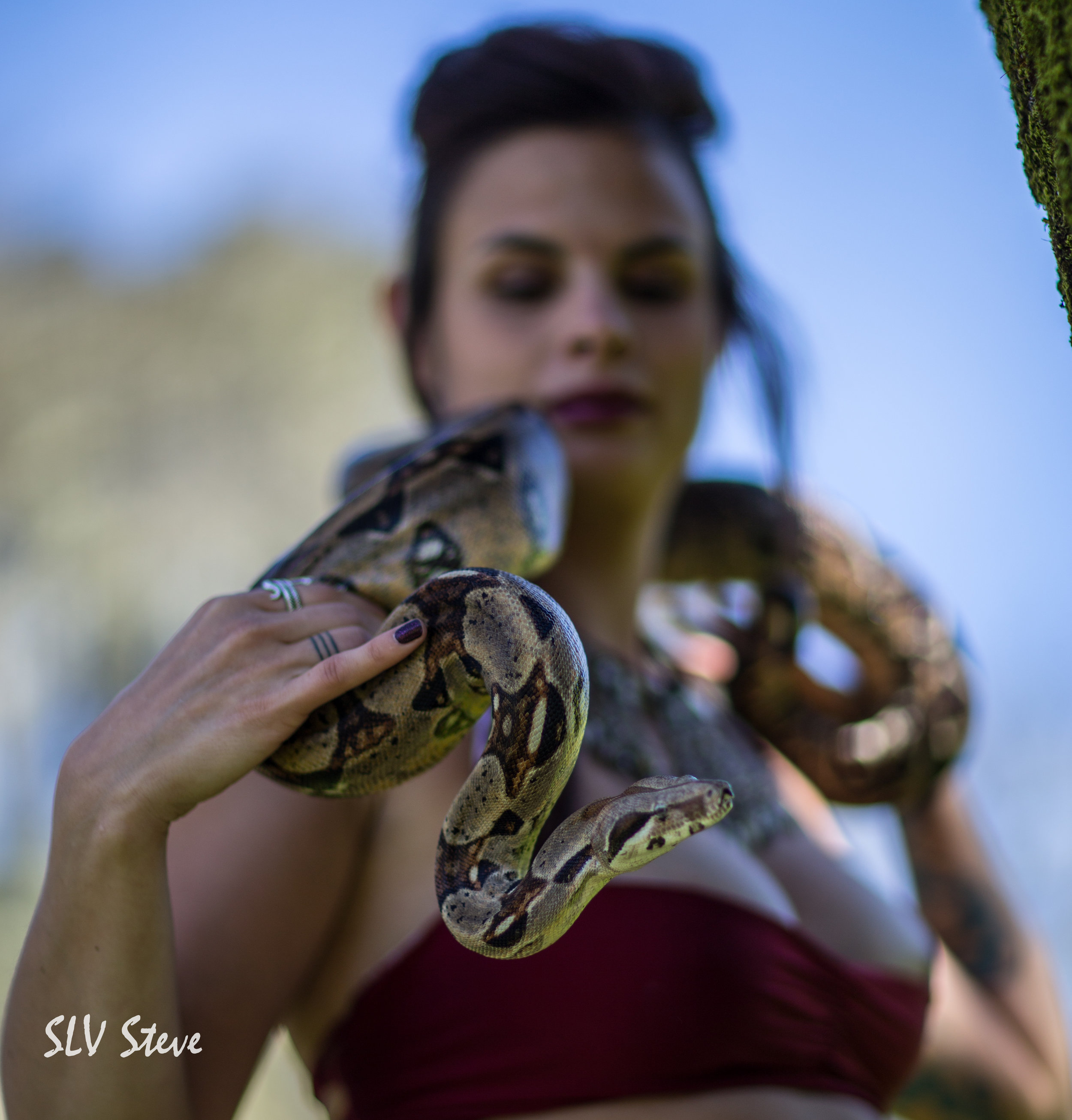 Level 3 Synergy - Combination of Serpent Massage, Dance and Dream Interpretation $888