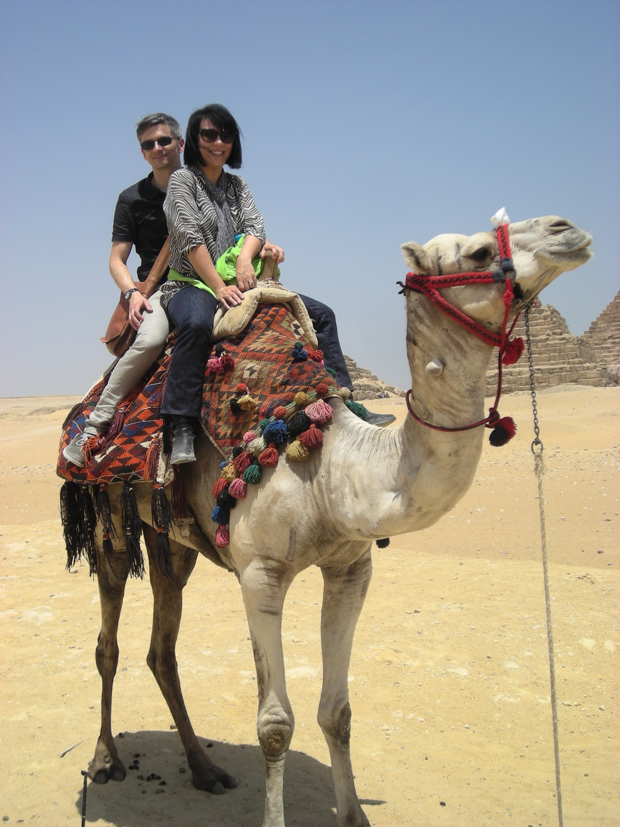 travel.camel2.jpg