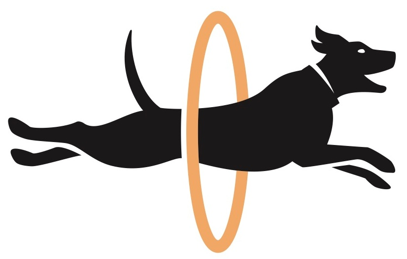 Tail wagging and hoop jumping is underway at Showdog as we debut three new lines of optically-clear graphic film designs. -